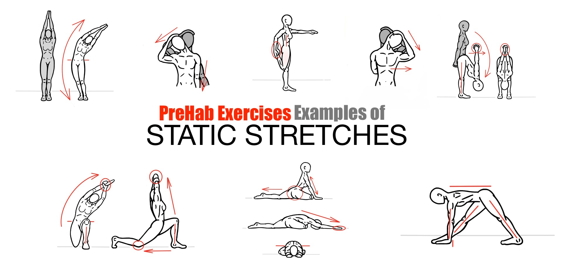 Examples of Static Stretches